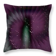 Rainy Window Throw Pillow