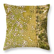 Raised Bed Vegetable Gardens Throw Pillow