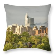 Raleigh Nc Panoramic Throw Pillow