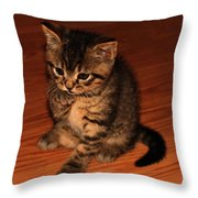 Ralphie Bathing 1 Throw Pillow