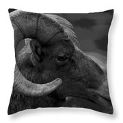 Ram Throw Pillow by Barbara Schultheis