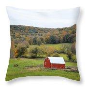 Ram Hollow Barn Throw Pillow