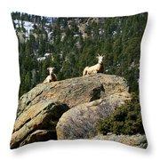 Ram On The Watch Throw Pillow