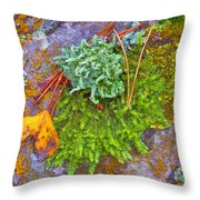 Rambouillet Forest Lichens Throw Pillow