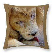 Ramses Throw Pillow