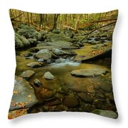 Ramsey Cascades Trailhead Throw Pillow