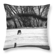 Ranch Horse In The Fields Throw Pillow