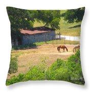 Ranch Life Throw Pillow