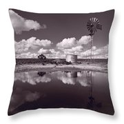 Ranch Pond New Mexico Throw Pillow