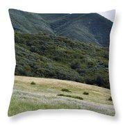 Rancho Sierra Vista Satwiwa Mountains Portrait Throw Pillow