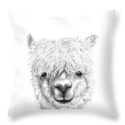 Randi Throw Pillow