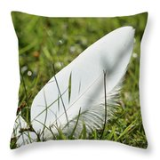 Random Feather Throw Pillow