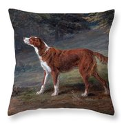 Ranger A Setter The Property Of Elizabeth Gray Throw Pillow