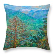 Ranges By Arnold Valley Throw Pillow