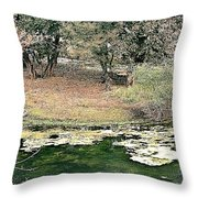 Ranthambore Throw Pillow