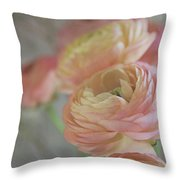 Ranunculus - 6219 Throw Pillow