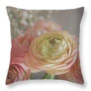 Ranunculus - 6243 Throw Pillow