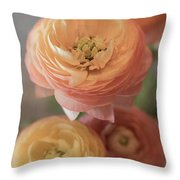 Ranunculus - 6296 Throw Pillow