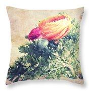 Ranunculus Stilllife Throw Pillow