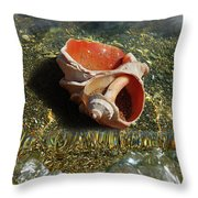 Rapana Throw Pillow