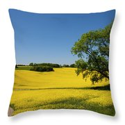 Rapeseed Field,west Sussex, England  Throw Pillow