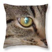 Grace Bring Me Kittens Throw Pillow