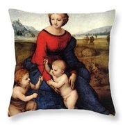 Raphael Madonna Of Belvedere  Madonna Del Prato  Throw Pillow