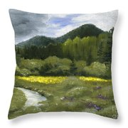 Rapid Creek Throw Pillow