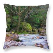 Rapids At The Rivers Bend Throw Pillow