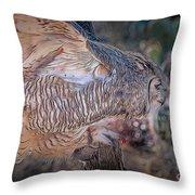 Raptor 28 Throw Pillow