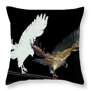 Raptor And His Soul Throw Pillow