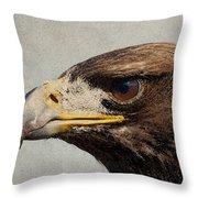 Raptor Wild Bird Of Prey Portrait Closeup Throw Pillow