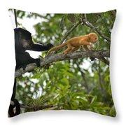 Rare Golden Monkey Throw Pillow