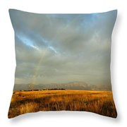 rare Morning Rainbow Throw Pillow