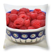 Raspberries In Polish Pottery Bowl  Throw Pillow