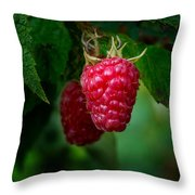 Raspberry 1 Throw Pillow