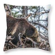 Raspberry 2013 Throw Pillow