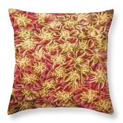 Raspberry Circles Throw Pillow