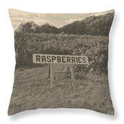 Raspberry Fields  Throw Pillow