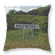 Raspberry Fields Three Throw Pillow