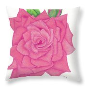 Raspberry Pink Throw Pillow