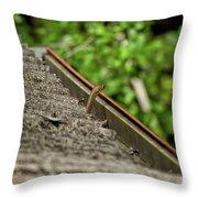 Rat Snake Throw Pillow