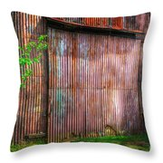 Rats Castle Farm Barn Door Throw Pillow