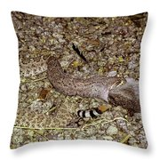 Rattlesnake Devouring Rabbit Throw Pillow
