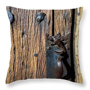 Rattlesnake Door Handle Mission San Xavier Del Bac Throw Pillow by Thomas R Fletcher