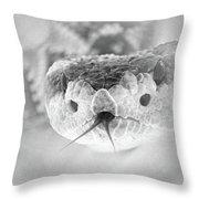 Rattlesnake Hello Throw Pillow