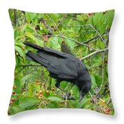 Raven In The Cherry Tree Throw Pillow
