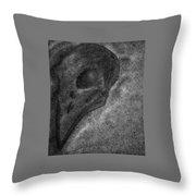 Raven Skull Throw Pillow