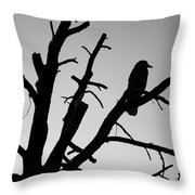 Raven Tree II Bw Throw Pillow by David Gordon