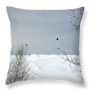 Ravens On The Prowl Throw Pillow